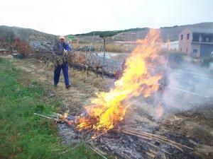 Autorización quemas agrícolas