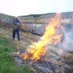 Autorització cremes agrícoles