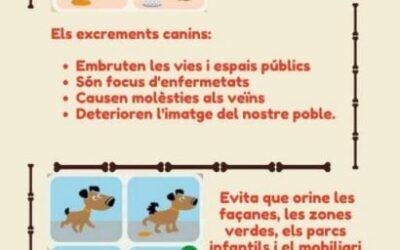 Campaña convivencia ciudadana y bienestar animal